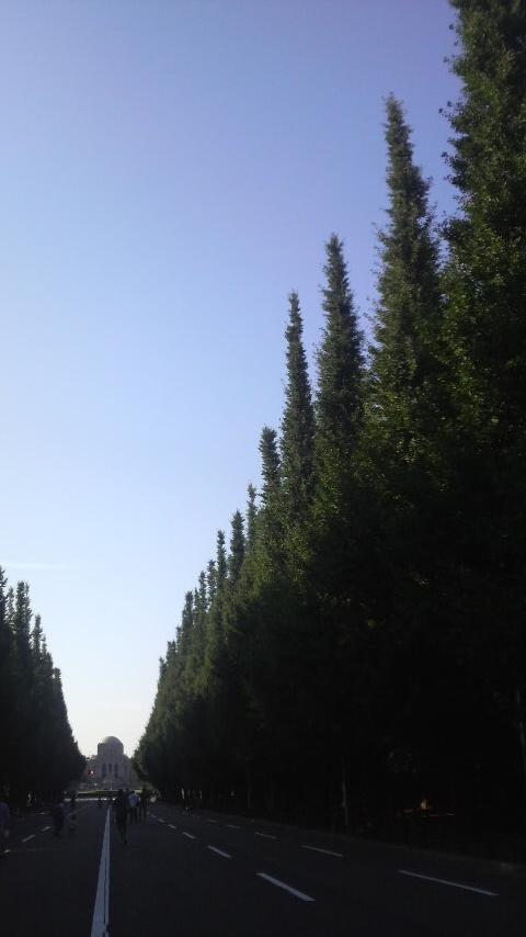 P1000211.jpg
